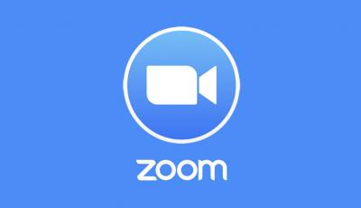 Zoom 3D Model